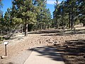 Hole ^6 at McPherson Disc Golf Course - panoramio.jpg