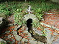 Holy Well, Coole Upper Two Churches, North Cork.JPG