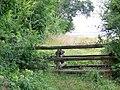 Horse jump, Badbury Rings - geograph.org.uk - 1470989.jpg
