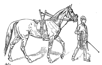 Horsemanship for Women 060.png