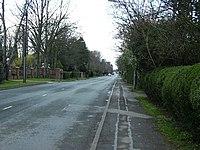 Humberston Avenue - geograph.org.uk - 373002.jpg