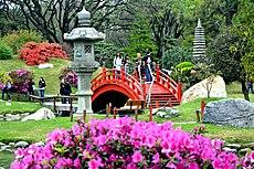 11 - Jardín Japonés