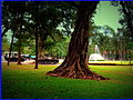 INDEPENCE PALACE SAIGON HO CHI MINH CITY VIETNAM JAN 2012 (7041476497).jpg
