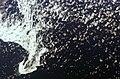 ISS016-E-30640 - View of the Labrador Sea.jpg