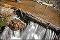 Ieriki Waterfall - panoramio.jpg
