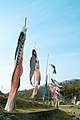 Iguchi Shimoyamatashirochō, Toyota-shi, Aichi-ken 444-3222, Japan - panoramio.jpg
