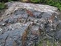 Impact pseudotachylite (Sudbury Breccia, Paleoproterozoic, 1.85 Ga; Windy Lake Northwest roadcut, Sudbury Impact Structure, Ontario, Canada) 1 (46842400485).jpg