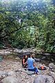 Indonesia - Bukit Lawang (26526990996).jpg