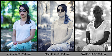 Reflected light photograph in various infrared spectra to illustrate the appearance as the wavelength of light changes. Infrared portrait comparison.jpg