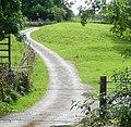 Into the fields of Cononley - panoramio.jpg