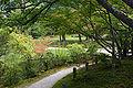 Isuien Nara12n4592.jpg