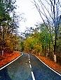 Jakam Road.jpg