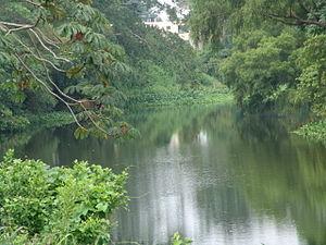 Veracruz - Jamapa River