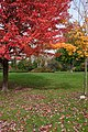 James Gardens (15482902329).jpg