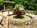Jardín botánico Torre del Vinagre 01.jpg