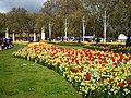 Jardines Palacio de Buckhingam - panoramio.jpg