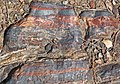 Jaspilite banded iron formation (Soudan Iron-Formation, Neoarchean, ~2.69 Ga; Stuntz Bay Road outcrop, Soudan Underground State Park, Soudan, Minnesota, USA) 41 (19199530646).jpg