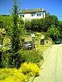Juni in Ihringen - panoramio (4).jpg