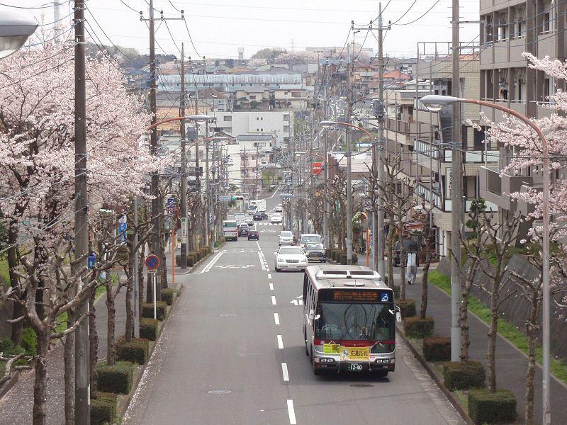 800px kl hu2prea tokyu ao441 kamoshidadanchi center