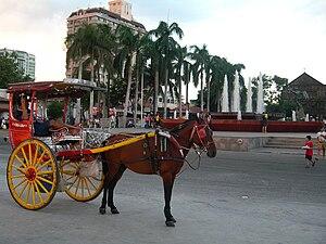Kalesa - A kalesa in Manila
