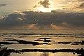 Kapoho Tide Pools, Waiopae, Pahoa (504370) (23368393760).jpg