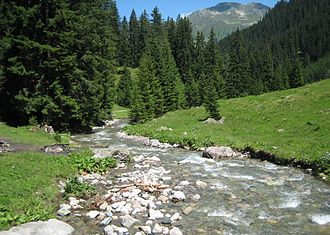Klosters - Stützbach stream between Klosters and Davos-Laret