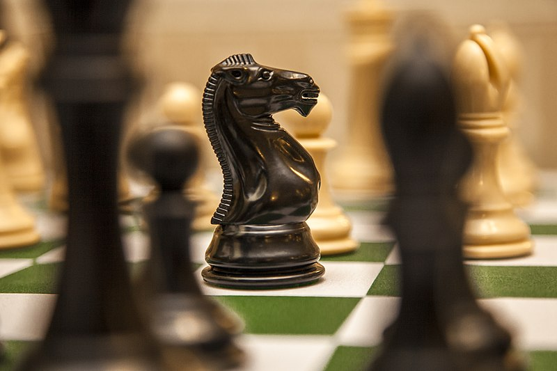 File:Knight-chess.jpg