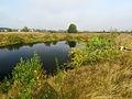 Kobylka small lake2.JPG