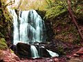 Koleshino Waterfall , 36.JPG