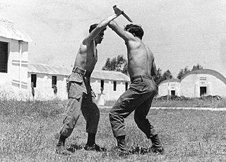 Krav Maga Israeli martial art