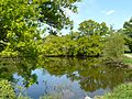 L'étang de Clégreuc aux abords du Moulin (Vay).jpg