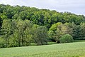 Lügde - 2015-05-24 - LIP-049 Ilsenbach (25).jpg