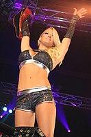 Attitude Era (pro Wrestling)