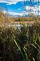 Lago-di-Vairano.jpg
