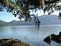 Lagoa do Peri - panoramio - Jeferson Felix (6).jpg