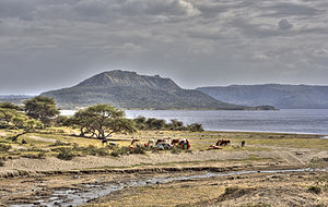 Soda lake - Lake Shala, in the East African Rift Valley