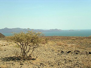 Lake Turkana - Image: Lake turkana
