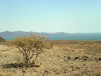 Rift Valley lakes - View over Lake Turkana