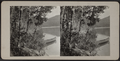 Lake view with canoe, from Robert N. Dennis collection of stereoscopic views.png