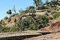 Lalibela, san giorgio, albero secco 01.jpg