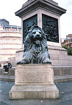 One of four Lions around the base of Nelson's Column