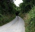 Lane, Tredudwell - geograph.org.uk - 531563.jpg