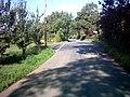 Lane junction with Nunn's Hill - geograph.org.uk - 259423.jpg