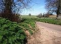 Lane near Exwell - geograph.org.uk - 1223167.jpg