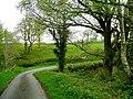 Lane to Cefngoleugoed - geograph.org.uk - 1288488.jpg