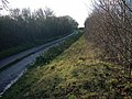 Lane to Ever Green - geograph.org.uk - 1081420.jpg