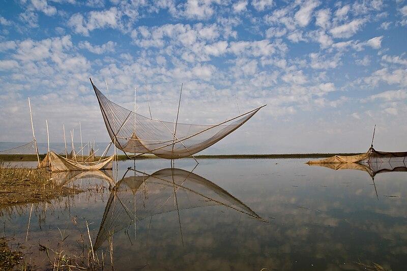 File:Large lift net (In Bengali-Veshal jal).jpg