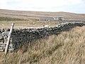 Leading Stead Bottom, Arkengarthdale - geograph.org.uk - 365390.jpg
