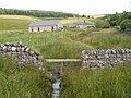 Lightpipe, near Kielder, Northumberland - geograph.org.uk - 1442550.jpg