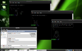 Linux-Mint-8-LXDE terminals info.png